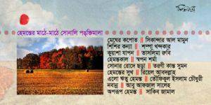 হেমন্তের মাঠে-মাঠে সোনালি পঙ্ক্তিমালা