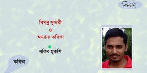 বিপন্ন সুন্দরী ও অন্যান্য কবিতা ॥ নকিব মুকশি